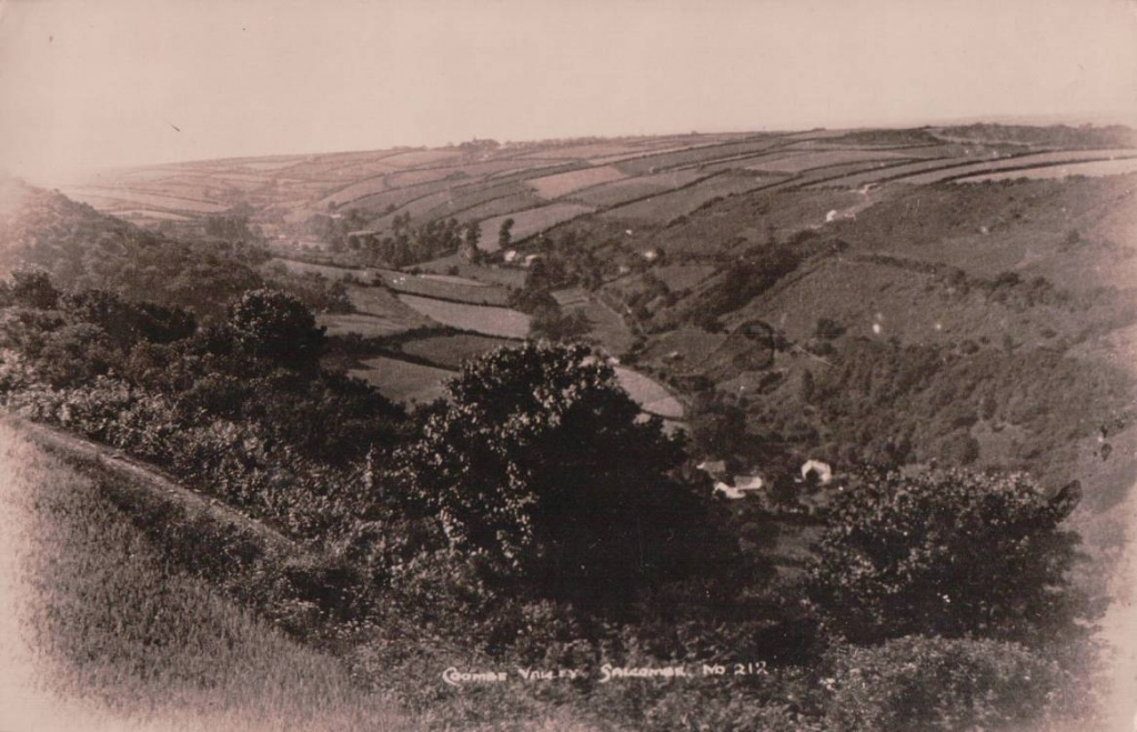Coombe Valley